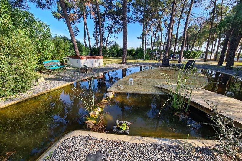 Maison individuelle T5 avec piscine + 2 annexes - Santa Barbara de Nexe | BVP-TMR-1083 | 38 | Bien vivre au Portugal