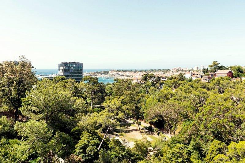Quadruplex T4 de 350 m² com elevador privativo - Cascais e Estoril / Monte Estoril   BVP-FaC-771   7   Bien vivre au Portugal