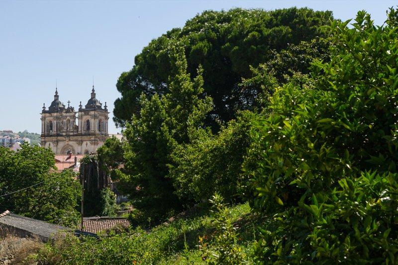 Terrain de 1290 m² avec projet approuvé pour 4 maisons unifamiliales - Centre Historique d'Alcobaça | BVP-TD-929 | 9 | Bien vivre au Portugal