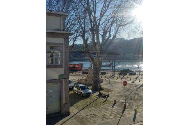 Prédio de 220 m² para reabilitar - Porto / Lordelo do Ouro e Massarelos | BVP-TD-930 | 3 | Bien vivre au Portugal