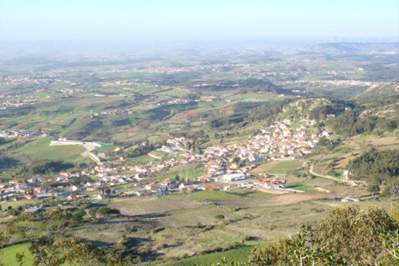 Moradia T4 de 450 m² - Cadaval | BVP-TD-939 | 6 | Bien vivre au Portugal