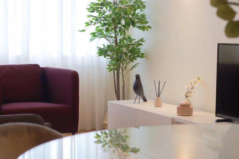 Appartement T2 de 65 m² - Centre de Porto / Cedofeita   BVP-TD-945   3   Bien vivre au Portugal