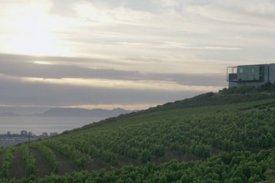 <p class= annonceFrom >Porto immobilier</p> | Vignoble avec terrain de 30 hectares - Veade | BVP-DA-645